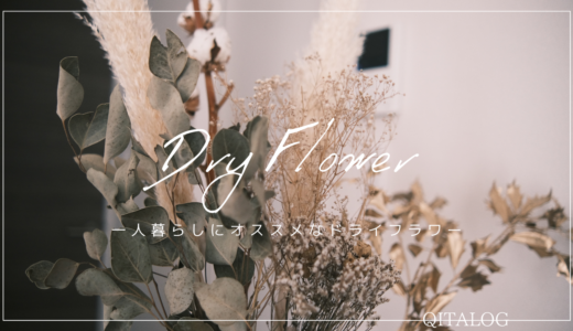 【Dry Flower】一人暮らしにおすすめなドライフラワー